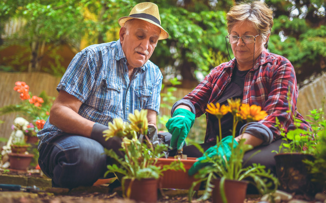 Resilient Livingwith Dementia: First Steps Webinar, Spring 2021